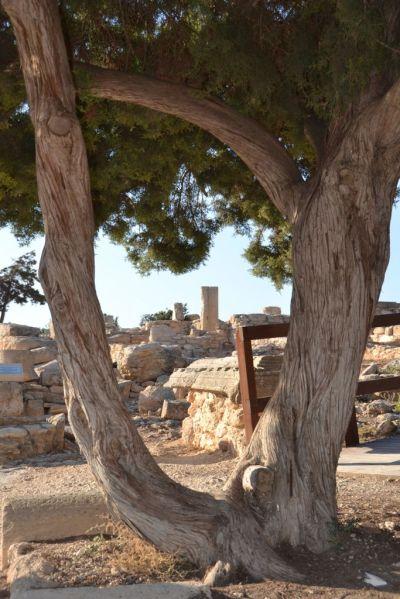 Ancient Kourion site of Apollo