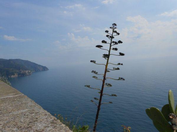 High above the Ligurian Sea